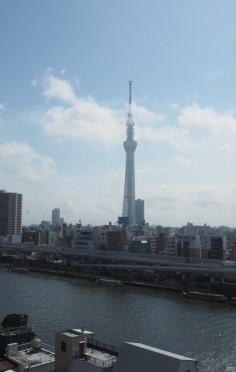 Got my head in the sky: Der Sky Tree in Tokyo