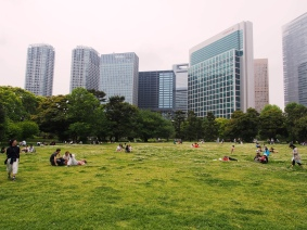 Ein schöner Ort für ein Picknick: Hamarikyu Park in Tokyo