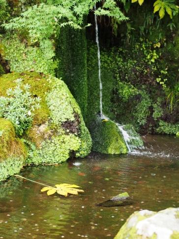 Teich mit Wasserfall im Garten des Kinkakuji, Kyoto