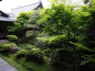 Der Eikan-do hat einen wunderschönen Garten