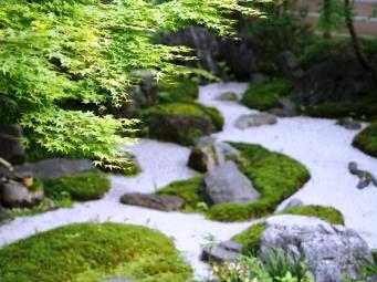 Die wunderbare Ordnung des Zen