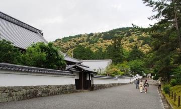 Ein Blick auf die Hügel rund um Kyoto